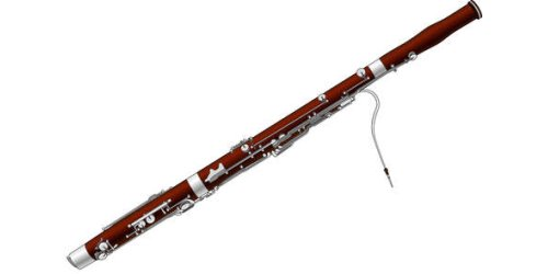 Interested in learning the Bassoon?