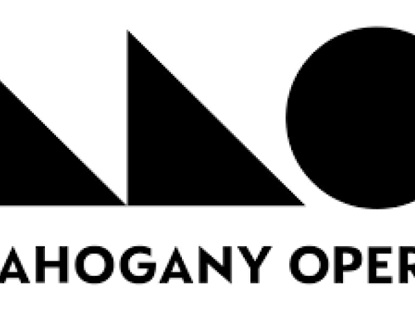 Snappy Operas - Open Call for Regional Delivery Teams